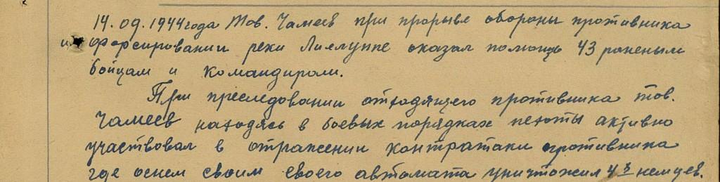 Чамеев М.П.
