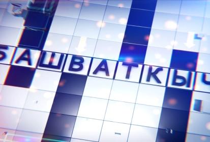 Передача с участием жителей Янгильдино и Семенчино на ТНВ